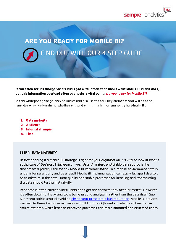 are you ready for BI whitepaper